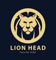 lion head logo circles design template vector image