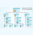organizational chart template of the corporation vector image vector image