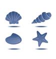 seashells symbols vector image vector image