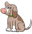 cartoon spotted puppy pet animal character vector image vector image