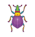 Colorful Beetle Bug Insect vector image vector image