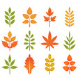 cute leaves vector image vector image