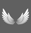 angel wings white silhouette isolated vector image