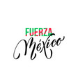 fuerza mexico lettering independence day mexican vector image