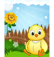 Little fluffy chicken vector image vector image