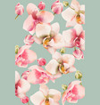 orchid bouquet pattern background watercolor vector image vector image