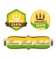 green label set with text organic grain vector image vector image