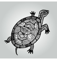 Handdrawing doodle turtle Wildlife collection vector image vector image