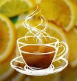 Ink hand drawn cup of tea on blurred photo vector image vector image