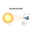 Solar eclipses vector image