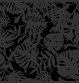 tile tropical pattern with exotic leaves on black vector image vector image