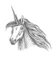 unicorn magic horse head sketch vector image vector image