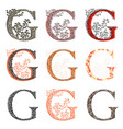 various combination fishnet letter g vector image vector image