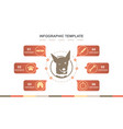 infographic template for pet vector image