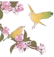 Twigs of Blooming Apple Tree and Two Birds Sitting vector image vector image