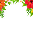 Tropical Flowers Border vector image