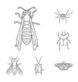 Insect and fly symbol set