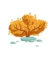 Yellow Leaved Autumn Wood Bush Natural Landscape vector image vector image