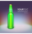 Beer bottle isolated on background vector image