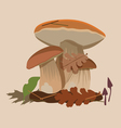 big forest mushrooms vector image vector image