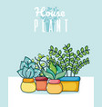 set of cute houseplants cartoons vector image
