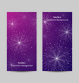 set vertical banners vector image vector image