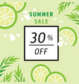 summer sale 30 percent off with lime juice vector image vector image