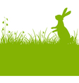 easter bunny green background vector image vector image