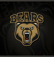 logo grizzly bear for a sport team vector image