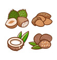 nut set design vector image