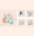 set abstract linear pre-made composition vector image vector image