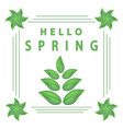 the spring vector image vector image