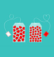 two teabag with red heart set inside happy vector image