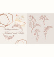 beautiful card with trees vector image