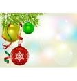 Christmas card template Fir branch and Christmas vector image vector image
