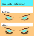 eyelash extension before and after vector image vector image