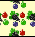 fruits - apples grapes pomegranate figs seamless vector image vector image