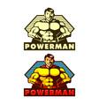 Powerman Mascot vector image vector image
