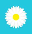 white daisy chamomile marguerite icon cute flower vector image vector image