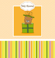 Bear in a gift package vector image