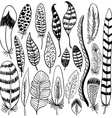 Hand drawn doodle feathers set vector image