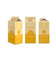 realistic orange juice box vector image