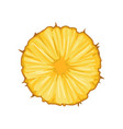 round slice of juicy pineapple delicious tropical vector image vector image