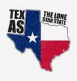 texas t-shirt with flag vector image