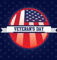 Veterans day vector image