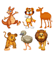 A group of wild animals vector image vector image