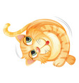 a rolling cat on white background vector image vector image