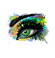 abstract beautiful female eye from a splash of vector image vector image