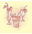 Alcohol drinks icons vector image