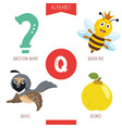 alphabet letter q and pictures vector image vector image